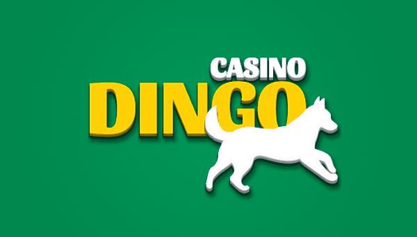 casino-dingo-logo